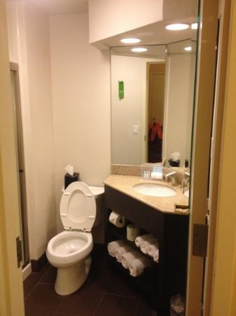 Hampton Inn & Suites New Orleans Downtown (French Quarter Area): bathroom