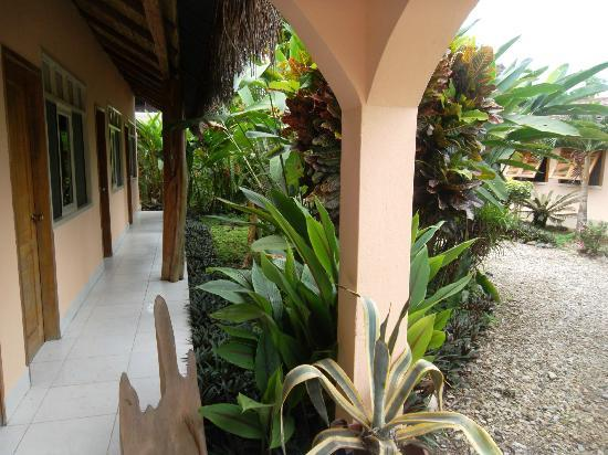 Yurapamba Jungle Resort: Mi habitacion es al final y el lado izquierda