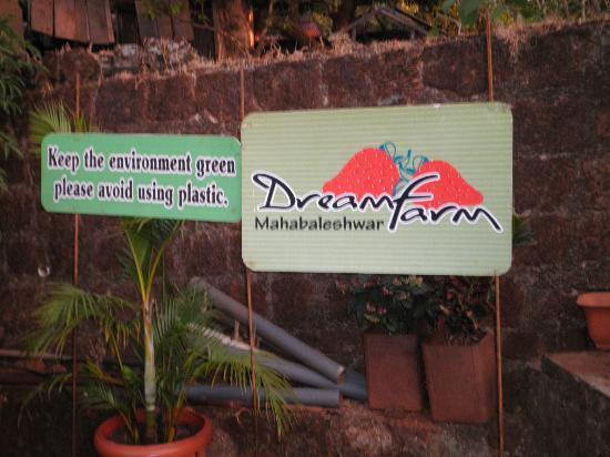 Hotel Dreamland: strwaberry garden