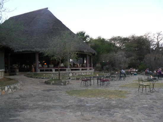 Tarangire Safari Lodge: The bar and terrace
