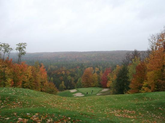 Treetops Resort: Masterpiece - Hole #6