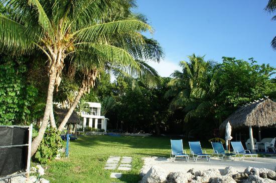 Azul del Mar: Uitzicht vanaf het privéstrand