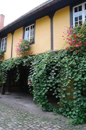 Hotel l'Abbaye d'Alspach : Courtyard