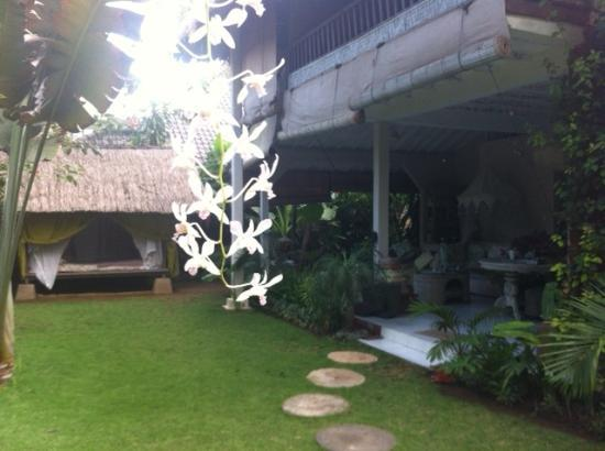 Casa Mia BnB Bali Seminyak: view from the entrance / orchids hanging on the trees (upstairs you see the balcony from 1 guest