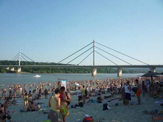 Strand: The Danube