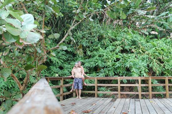 Palmar Beach Lodge : Lookout