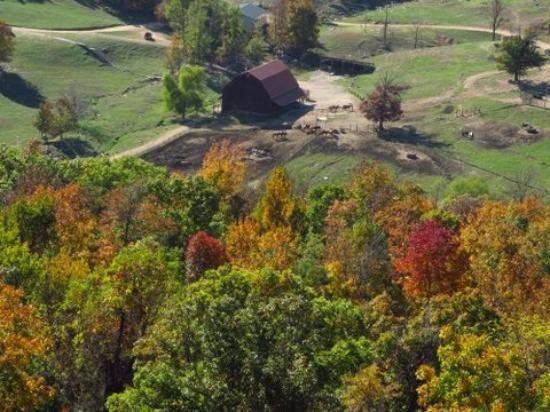 Horseshoe Canyon Ranch: Autumn colors! 