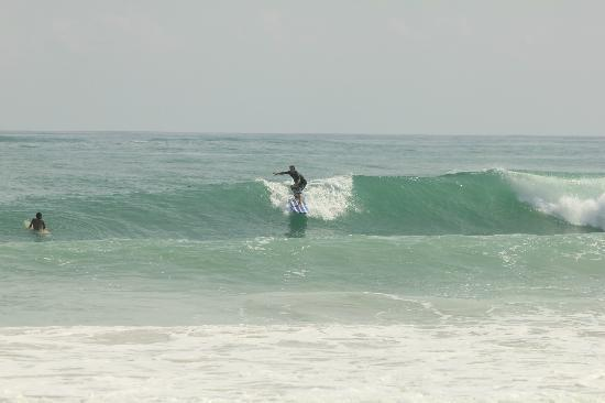 Punta Cana Surf School : just go with the swell...Danilo puntacanasurfschool