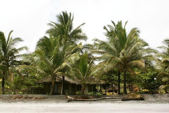 Cabanas Las Pigualas: Beach