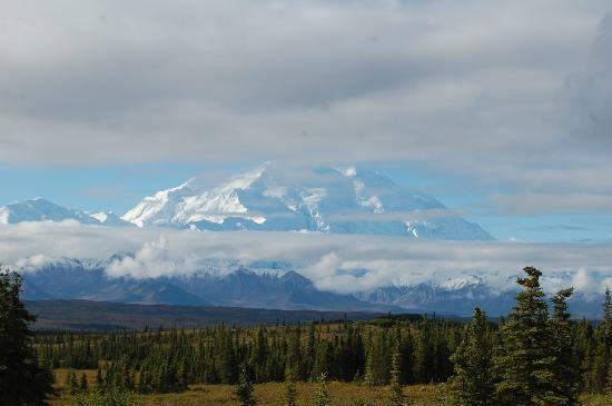 Wonder Lake Campground : View from the Campground of Denali