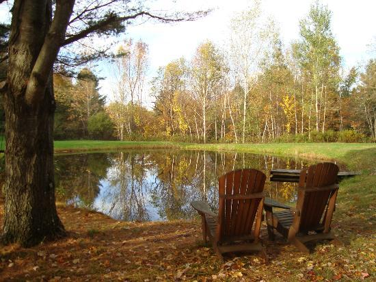 Moose Meadow Lodge: the pond nearby