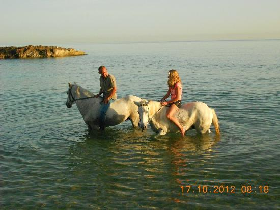 Hersonissos Riding Center