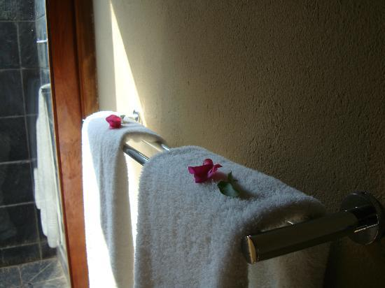 Nkorho Bush Lodge: flowers in the bathroom