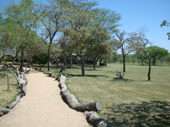 Nkorho Bush Lodge: The grounds of the lodge