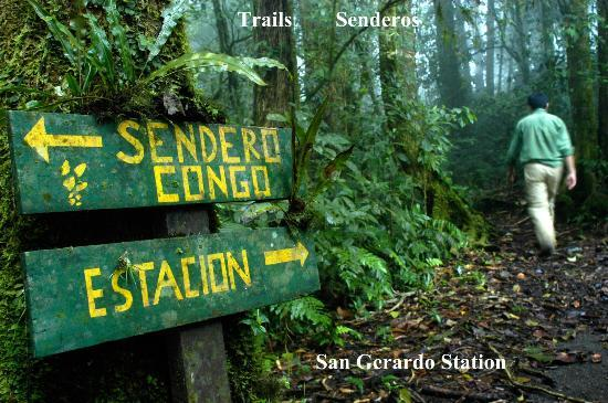 ‪‪San Gerardo Biological Station‬: Trails in San Gerardo‬