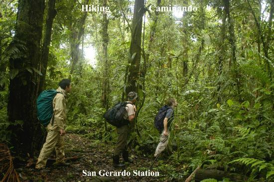 San Gerardo Biological Station: Trails