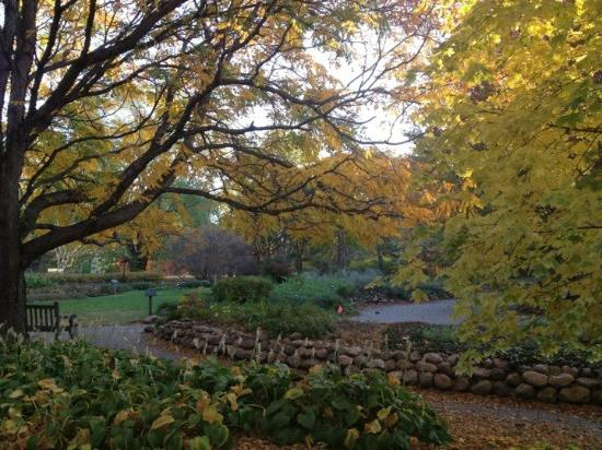Mccrory Gardens Brookings