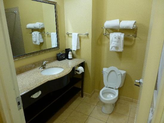 La Quinta Inn & Suites Vicksburg: Bathroom