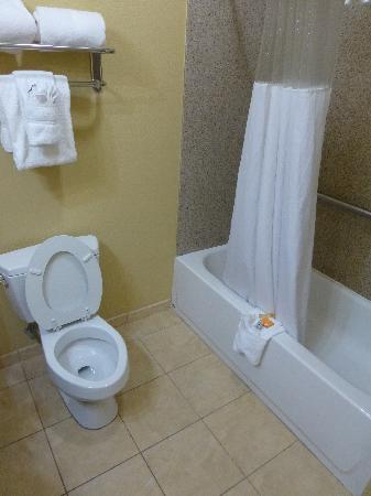 La Quinta Inn & Suites Vicksburg : Bathtub and toilet