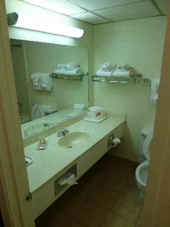 Econo Lodge Corinth: Bathroom