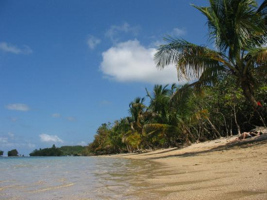 Hotel Palma Royale: Bocas del Toro