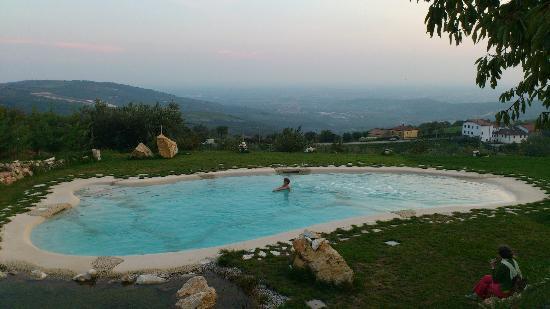 Agriturismo La Perlara : Swimming Pool