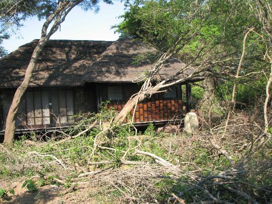 andBeyond Phinda Vlei Lodge照片