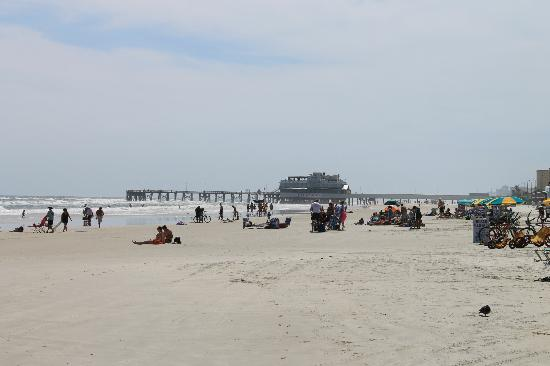 Daytona Beach Regency: Looking down towards the pier!