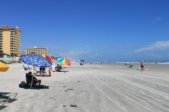 Daytona Beach Regency : Looking north on Daytona Beach!