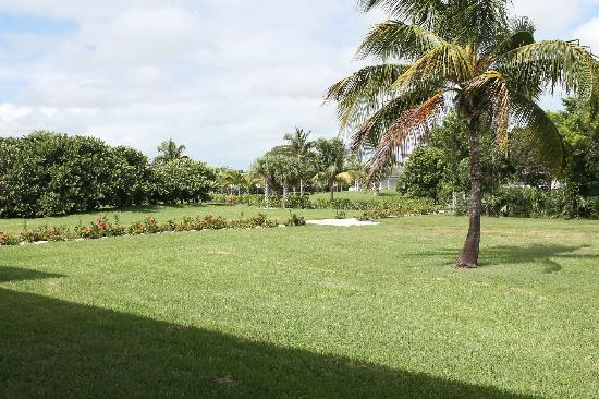 Viva Wyndham Fortuna Beach: hotel grounds