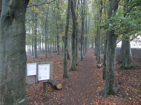 Cotswold Farm Park: Wilderness Walk