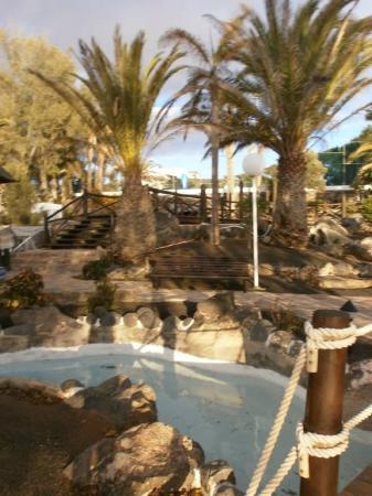 H10 Timanfaya Palace: hotel gardens