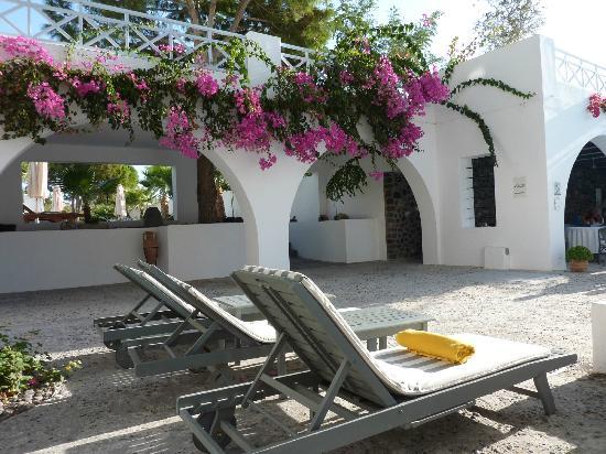 Santorini Kastelli Resort: Bourgonvillia
