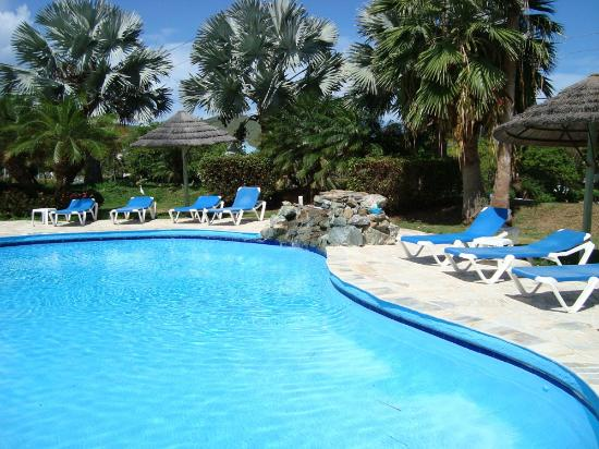 Divi Carina Bay All Inclusive Beach Resort: The Villa Pool