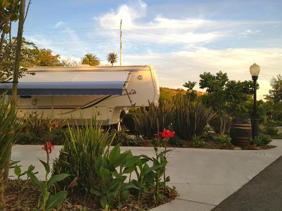 Escondido RV Resort Grounds & RV Site
