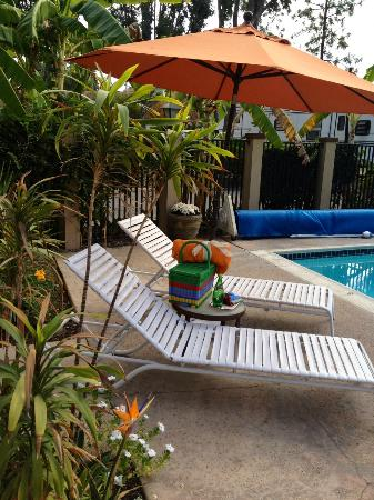 Circle RV Resort: Circle RV Pool Area