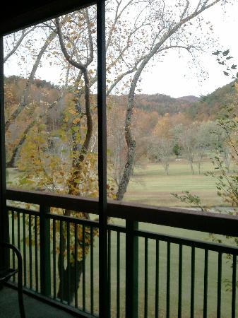 Bent Creek Golf Village: Off of our screened in balcony.