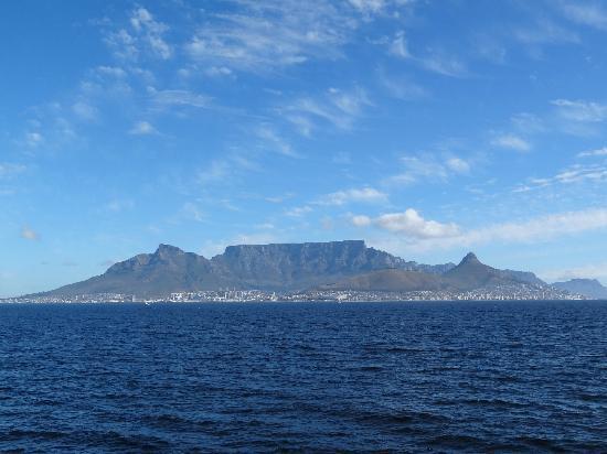 Seascape Tours: Table Mountain