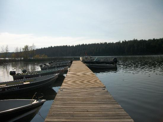 Roche Lake Resort : Dock in front of resort
