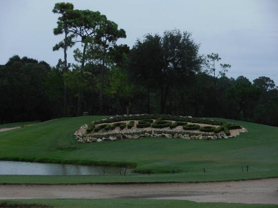 ‪‪Innisbrook, A Salamander Golf & Spa Resort‬: Innisbrook golf resort‬