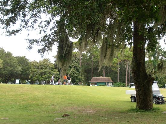 Innisbrook, A Salamander Golf & Spa Resort : Innisbrook golf resort