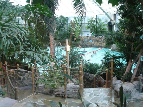 Pool Picture Of Center Parcs Longleat Forest Warminster Tripadvisor