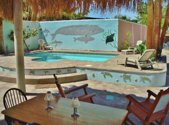 El Tiburon Casitas: Pool and patio area
