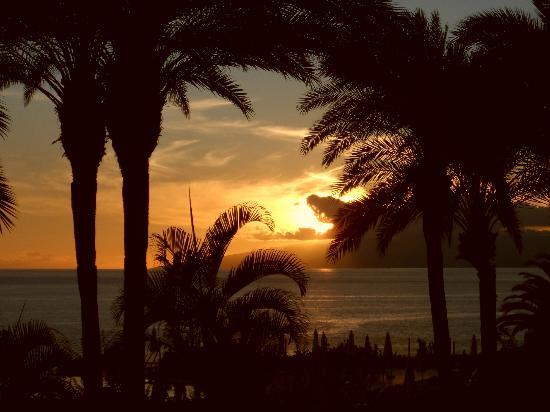 Bahia Principe Costa Adeje 사진