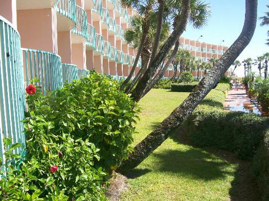 Casa Loma Inn: courtyard