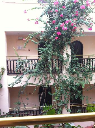 Efendi Hotel: Flowers outside the room