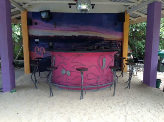 Pink Flamingo: Pool Bar