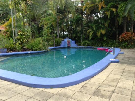 Pink Flamingo: Heated Pool