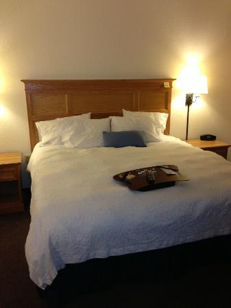 Hampton Inn & Suites Phoenix/Scottsdale: King bed suite