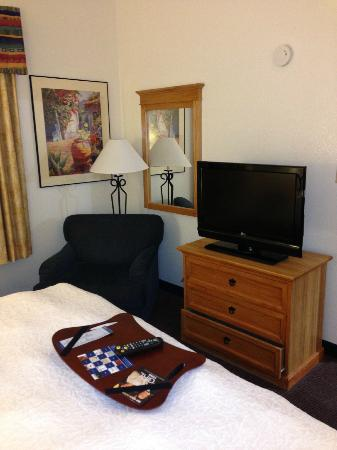 Hampton Inn & Suites Phoenix/Scottsdale: in the king bed suite